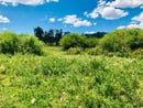 Tbd L15 Rosebush Road, Canon City, CO 81211