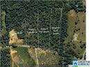 RIVER BEND RD, WEST BLOCTON, AL 35184