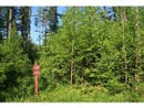 Lot 48 Evergreen Lane, Newry, ME 04261
