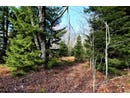 Lot 5 Weiss Knob Ski Road, Davis, WV 26260