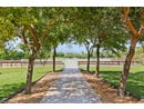 13159 57th Pl S, Wellington, FL 33449