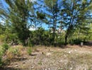 #163 TRANQUILITY WAY, Coral Harbour, New Providence/Paradise Island