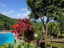 View Home with Pool+ Apartment, Roatan, Islas de la Bahia